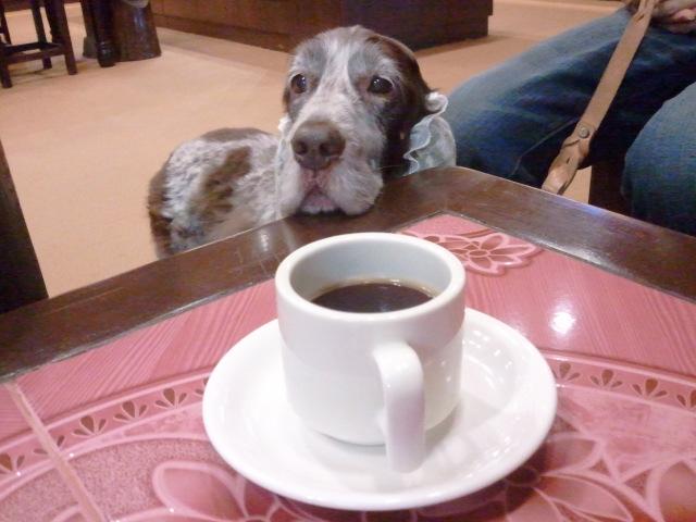 コーヒタイム♪
